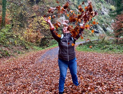 November in der Schweiz